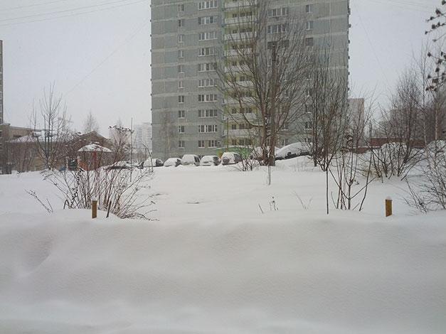 снег в Рязани 2016