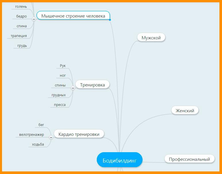 Моя примерная карта в mindmeister