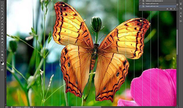 Как создать анимацию в фотошопе adobe photoshop - Pumps.ru